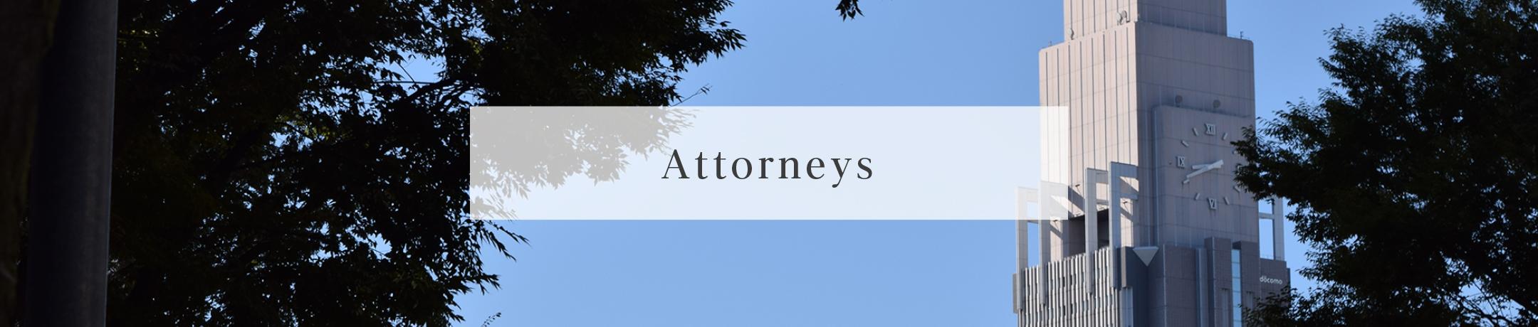 Attorneys